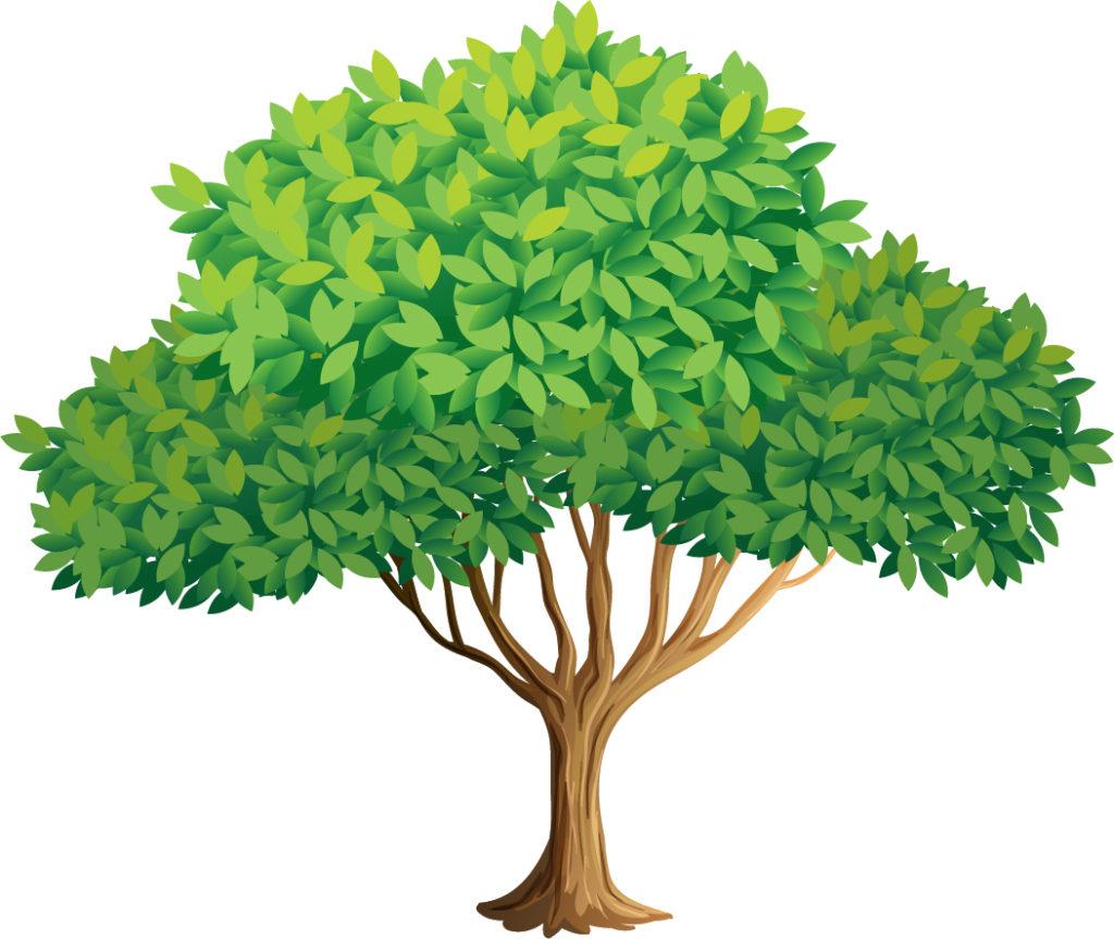 Día Mundial del Árbol - 28 de Junio 2020