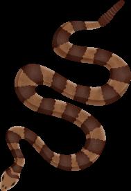 Día Mundial de la Serpiente - 16 julio 2020