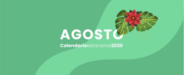 calendario marketing digital Agosto 2020