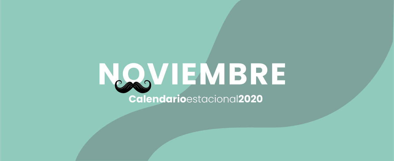 calendario marketing digital Noviembre 2020